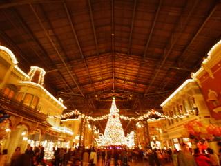 東京ディズニーランドのクリスマスツリー